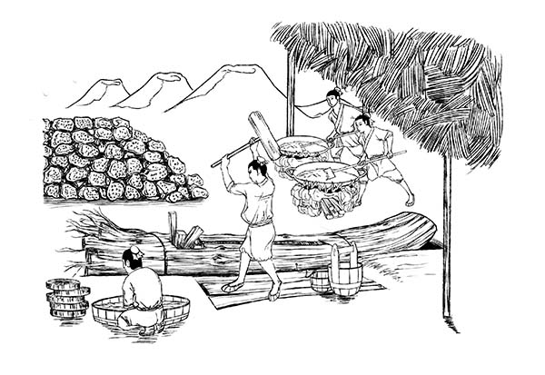 山柚油手绘插画