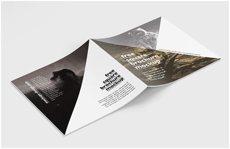 简洁明快的扁平化画册设计风格