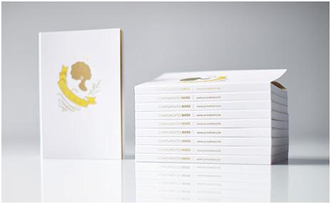 超精致的微型画册设计